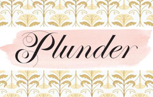 plunder posse logo